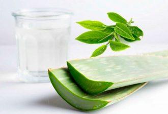 Шикарная кожа с зеленым чаем и алоэ вера