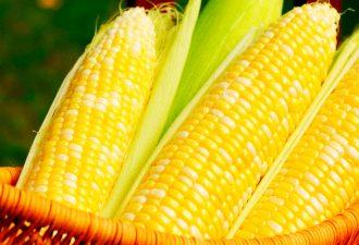 Используйте кукурузную маску для глубокой чистки