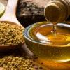 Перга пчелиная – чудо, созданное пчёлами. Лечебные свойства перги