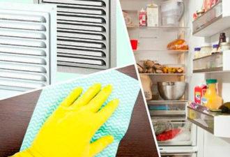 Скрытые источники неприятных запахов в доме