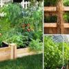Красивые грядки своими руками: 50 идей, как украсить огород