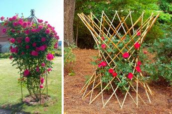 Эффектные и несложные в реализации опоры для цветов — отличный способ облагородить участок