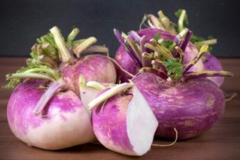 Топ-10 самых поздних овощей